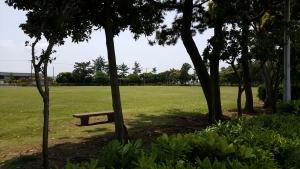 潮浜公園_多目的広場