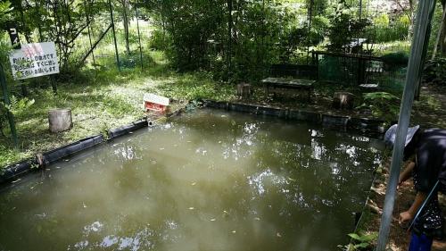磯源フィッシングパーク遊び釣り池