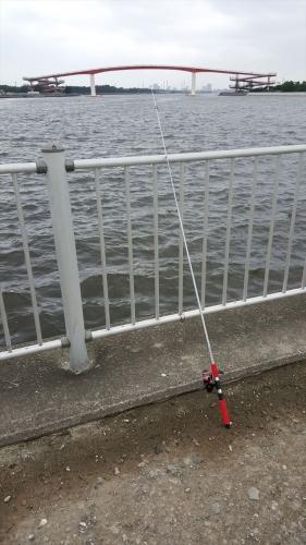出島で釣り