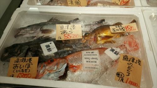 撰鮮_お魚4