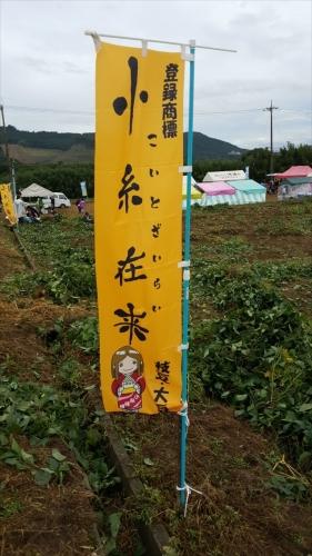 枝豆収穫祭_小糸在来のぼり