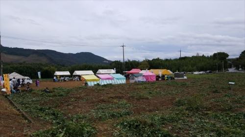 枝豆収穫祭_会場