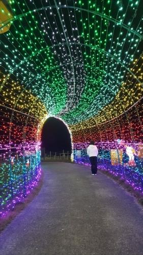東京ドイツ村_光のトンネル