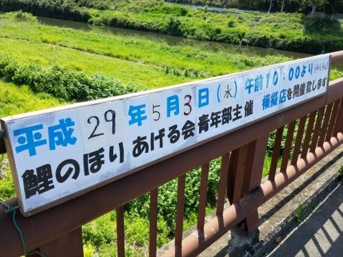 中川橋こいのぼり案内