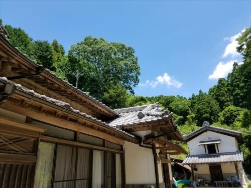 糸の里山_風景3