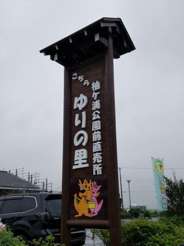 ゆりの里_看板201709