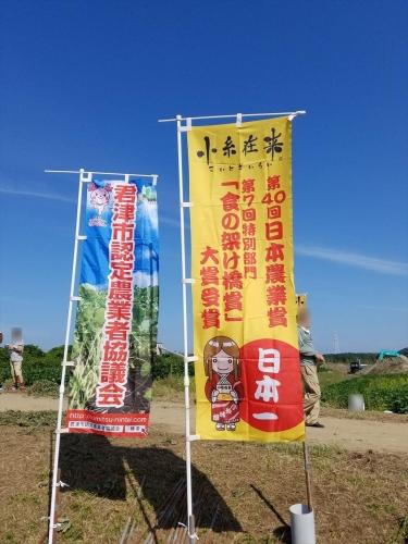 枝豆収穫祭2017_小糸在来のぼり