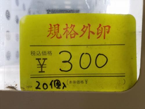 酒川養鶏園_規格外たまご