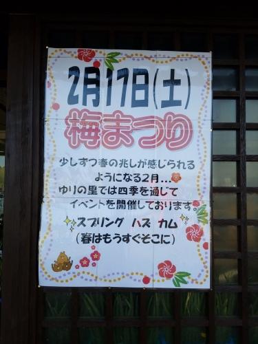 ゆりの里_梅まつりポスター