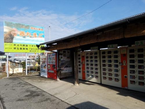 金田のたまご販売機1