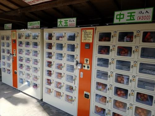 金田のたまご販売機2