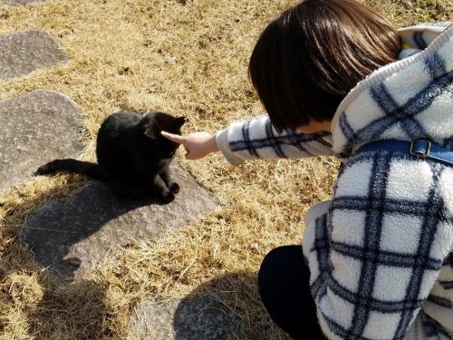 袖ケ浦公園_ムスメと猫