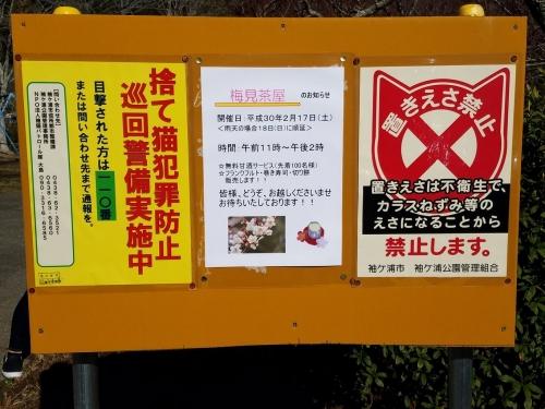袖ケ浦公園_置きエサ禁止看板