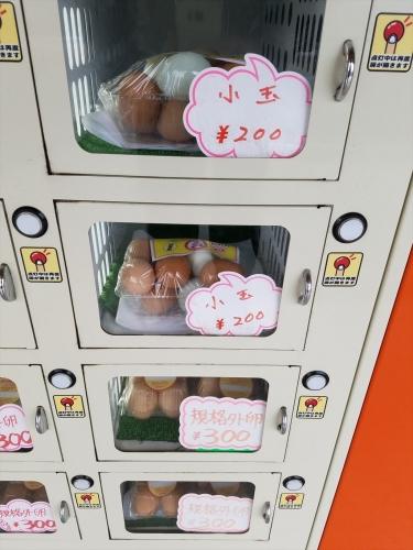 鳥海鶏業販売機_小玉