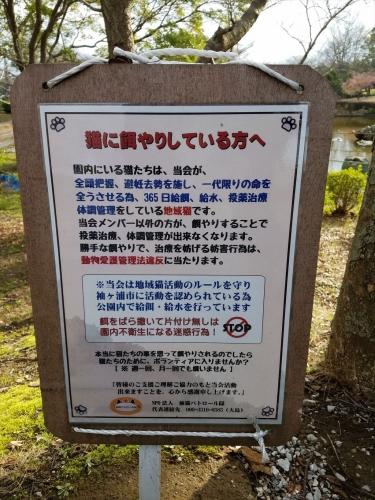 袖ケ浦公園_エサやり厳禁看板