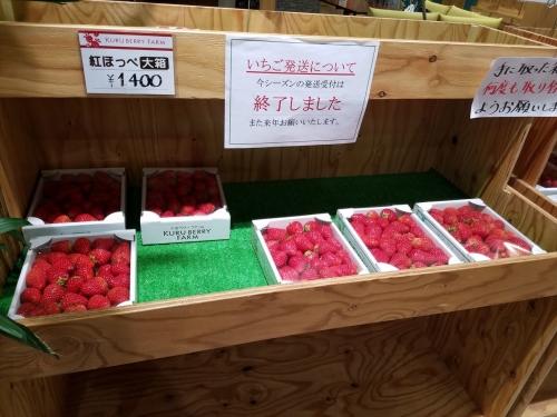 愛彩畑_いちご