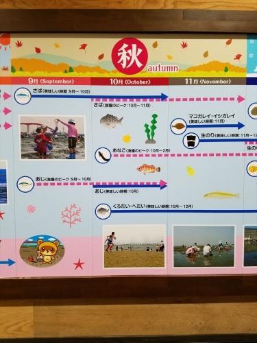 食彩カレンダー山_秋