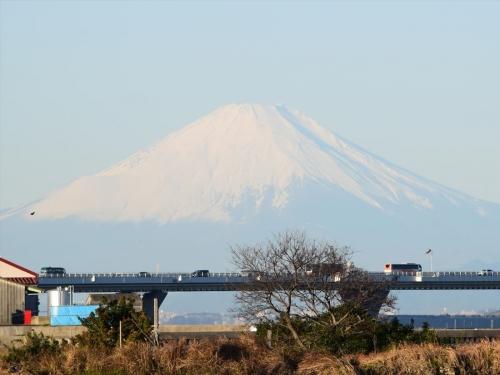 さざなみ公園_富士山